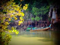 Hidden boats