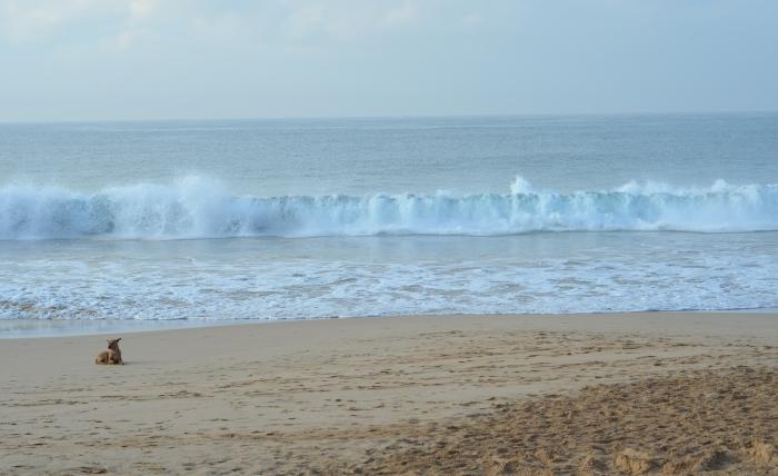 Sri Lanka 003.1