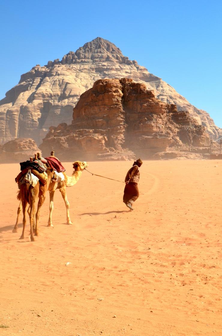 Bedouin with camels ~ Wadi Rum, Jordan