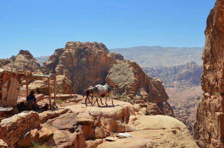 My ride - Donkeys in Petra