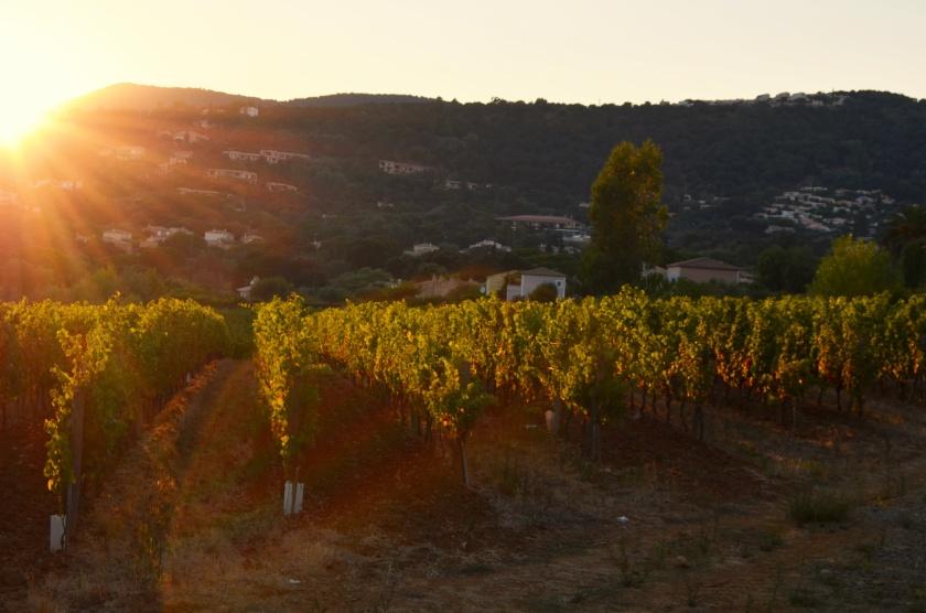 Provence, France. La Croix Valmer