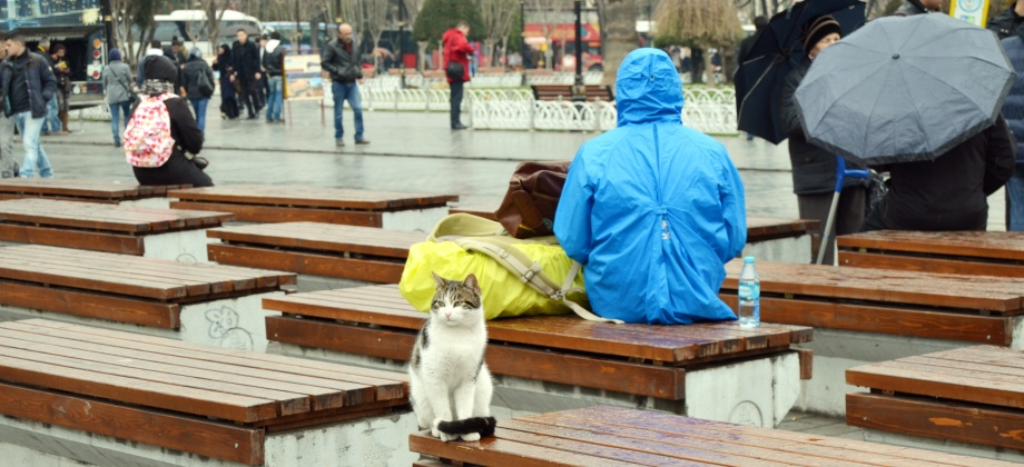Photo of the Week: Sitting In TheRain