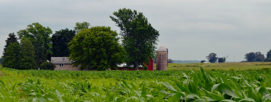 Photo of the Week: The Great Heartland of America