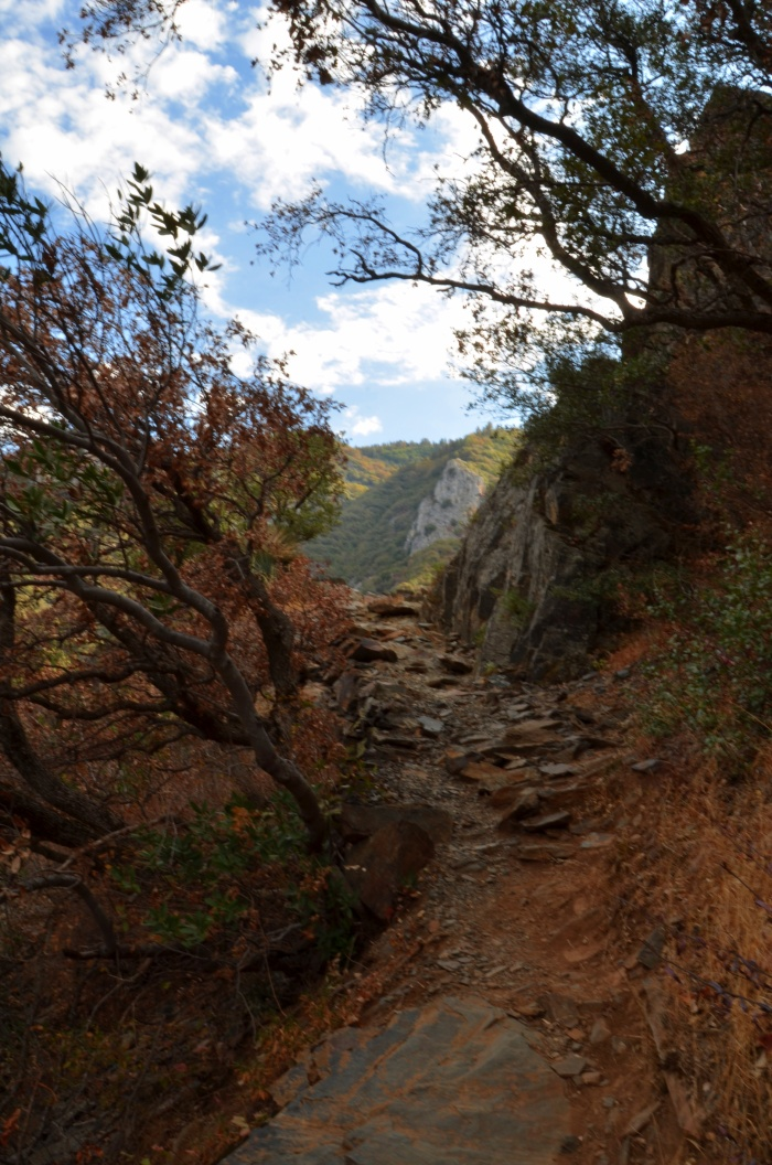 Marble Trail, Sequoia National Park, California