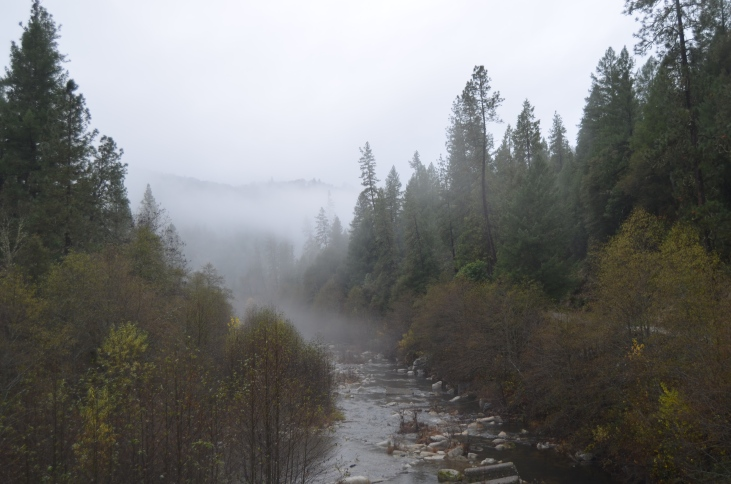 The Yuba River