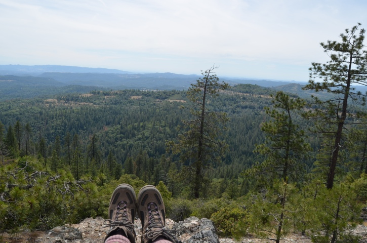 Arnold Rim Trail, Arnold California